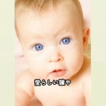 ted_baby_gogaku.jpg