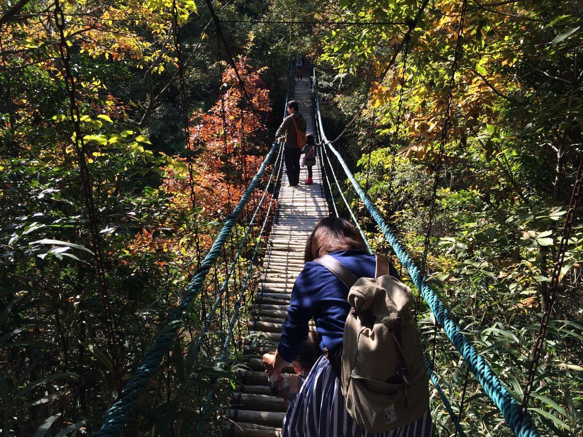 渋川動物公園の吊り橋