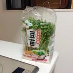 子供もよく食べる野菜「豆苗」が安くて栄養満点、言うことなし!