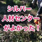 庭の大掛かりな剪定、木の伐採をするならシルバー人材センターを使ってみるのがオススメ!