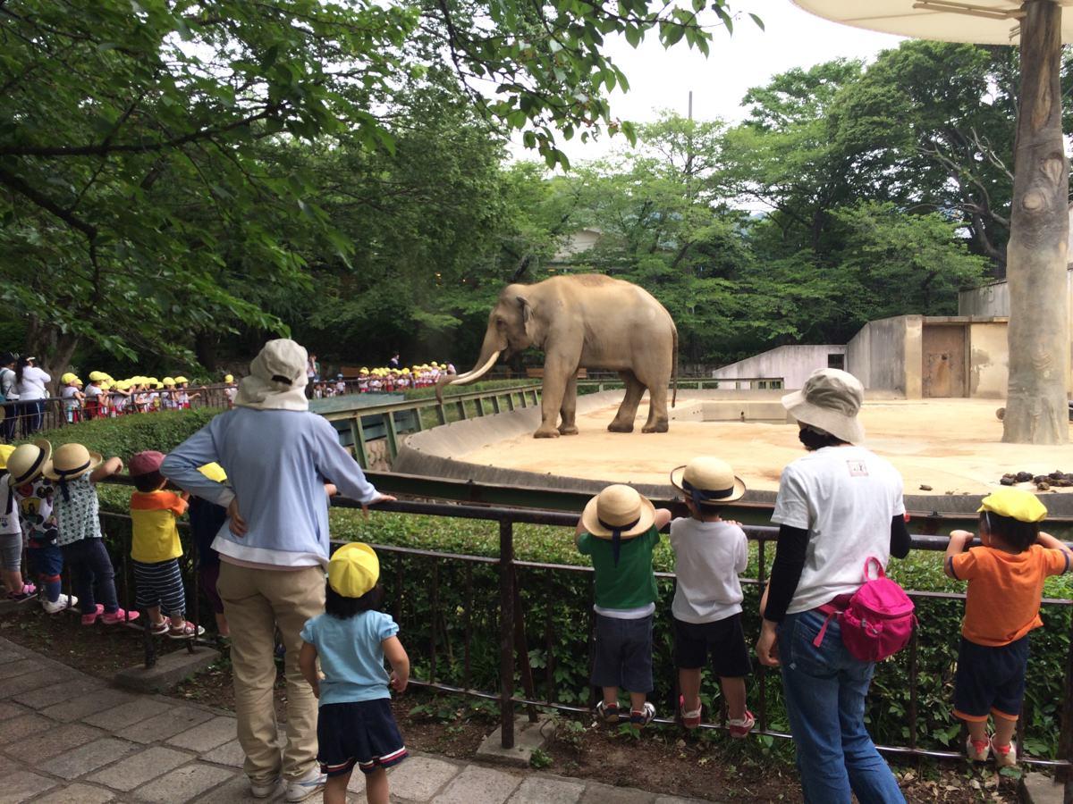 王子動物園動物の像