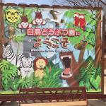 とにかくふれあいまくれる!小さい子供向けには間違いない「しろとり動物園」