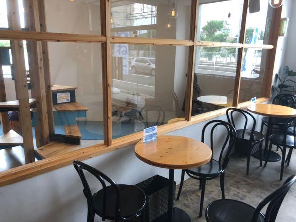 岡山問屋町にある猫カフェ「blue cat cafe(ブルーキャットカフェ)」に行ってきました。
