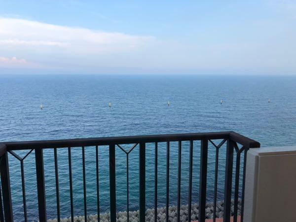 「アオアヲナルトリゾート」の部屋からの眺め