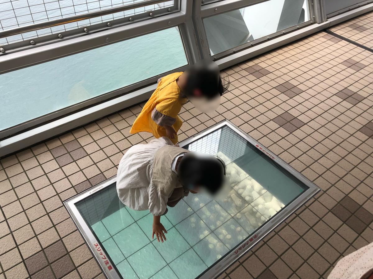 大鳴門橋「渦の道」のガラス床を覗き込む子供達